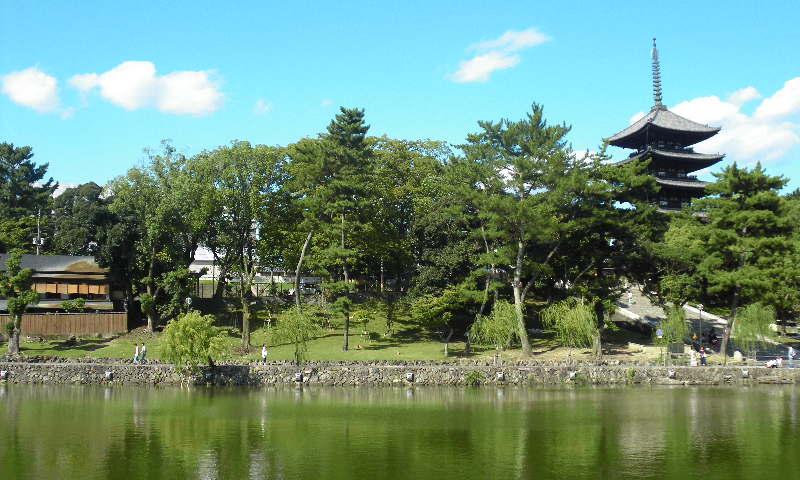 墓参りの帰り道に猿沢池へ
