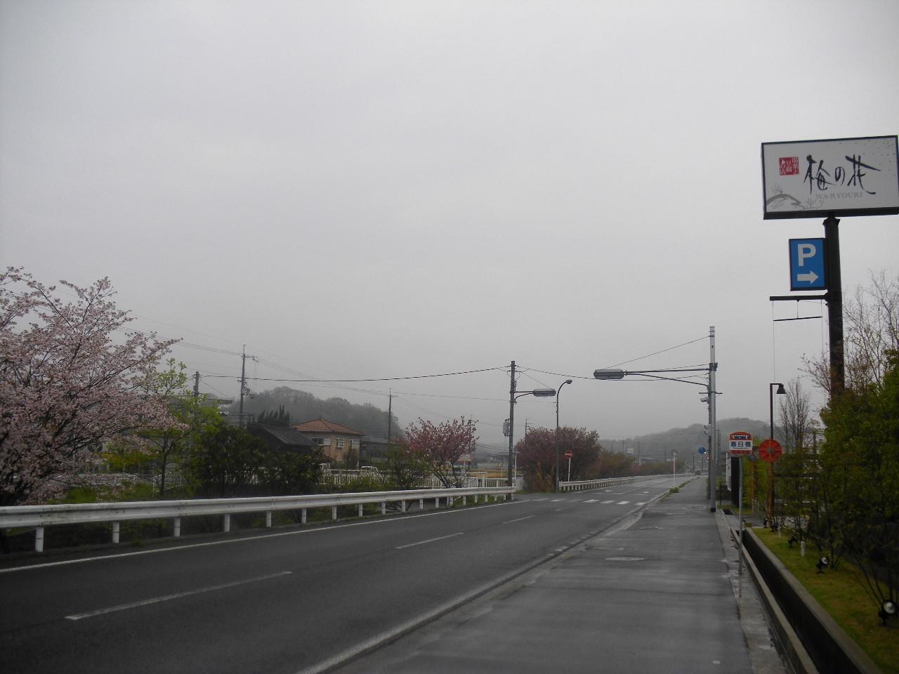 週末、小雨降る朝、北を!