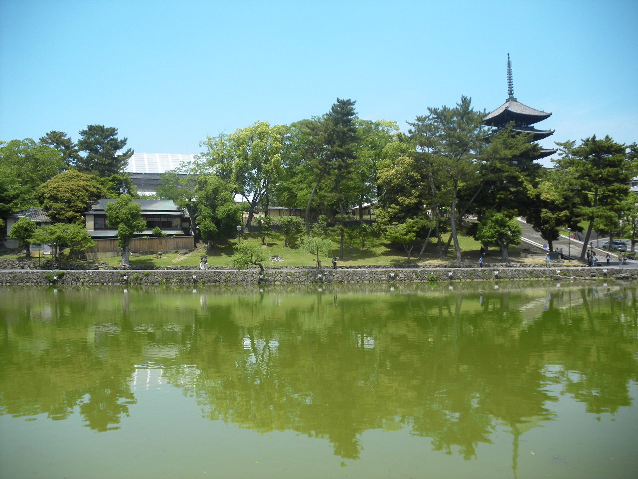 奈良猿沢池にて 1913.5.26