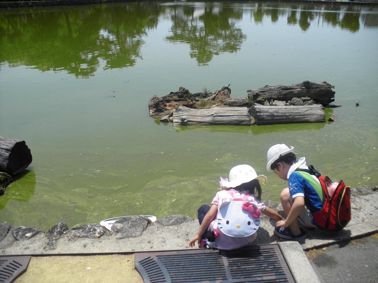 奈良・猿沢池のほとりで 2016.5.2<br />  6