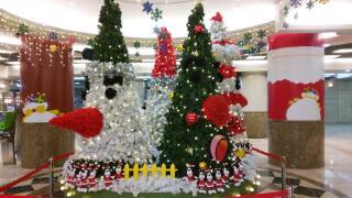 街は、もうクリスマス気分!