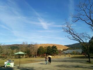 奈良公園 春日野園地にて 2015.12.9